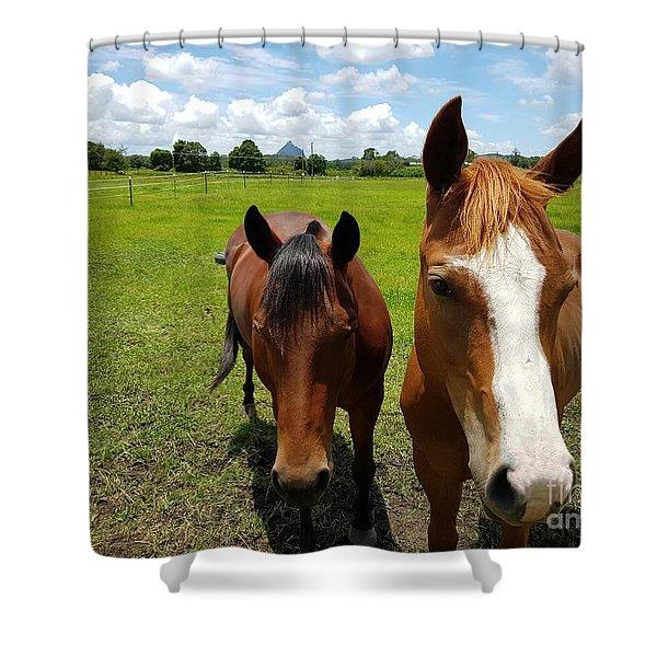 Horse Friendship Shower Curtain