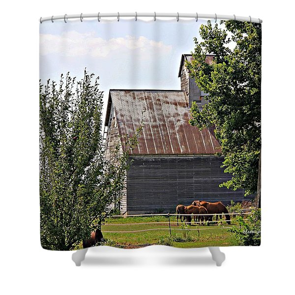 Horse Haven Shower Curtain