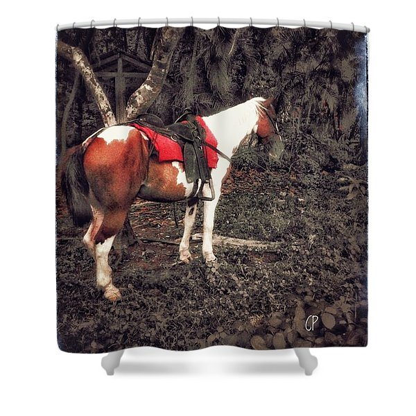 Horse In Red Shower Curtain