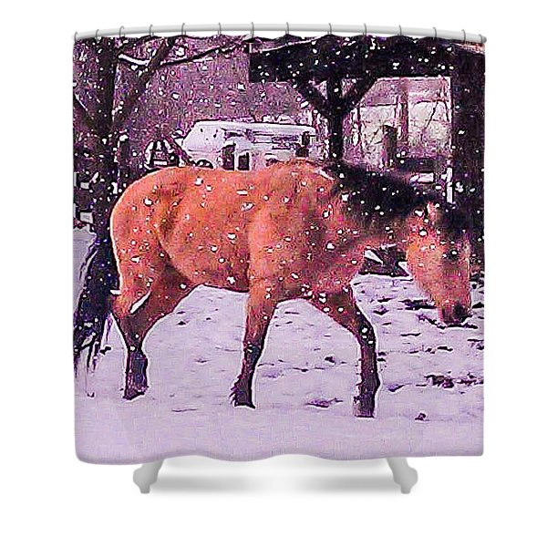 Horse In Snow Shower Curtain