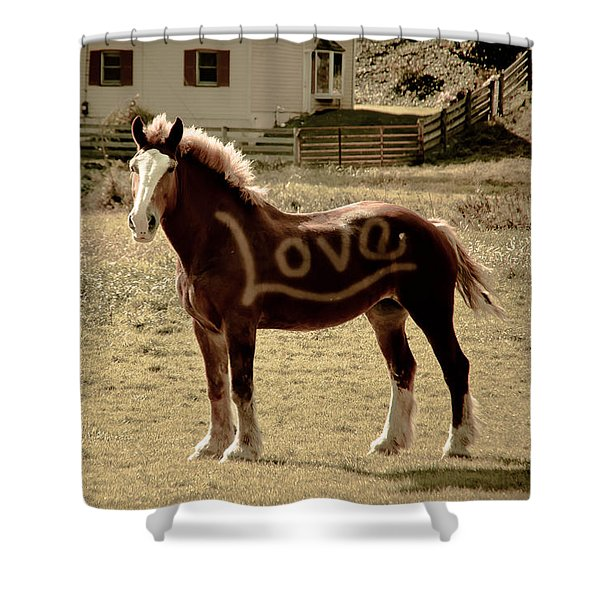 Horse Love Shower Curtain