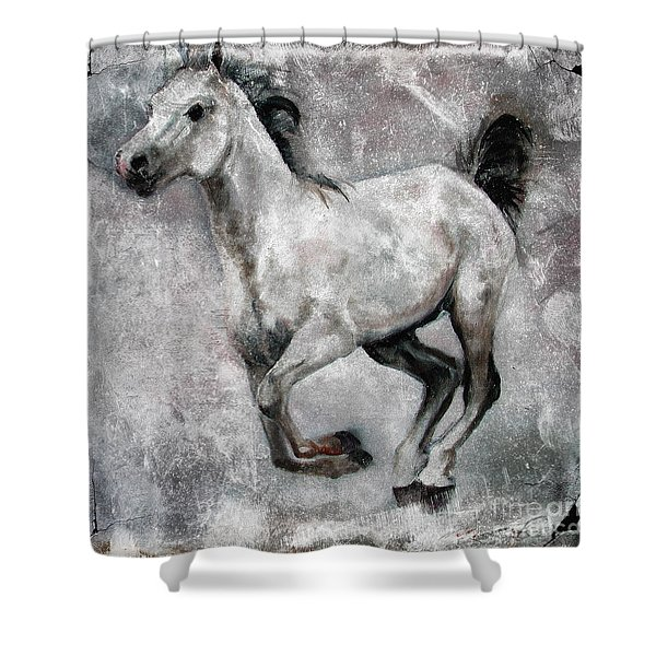 Horse Painting Stallion Lipizzaner Shower Curtain