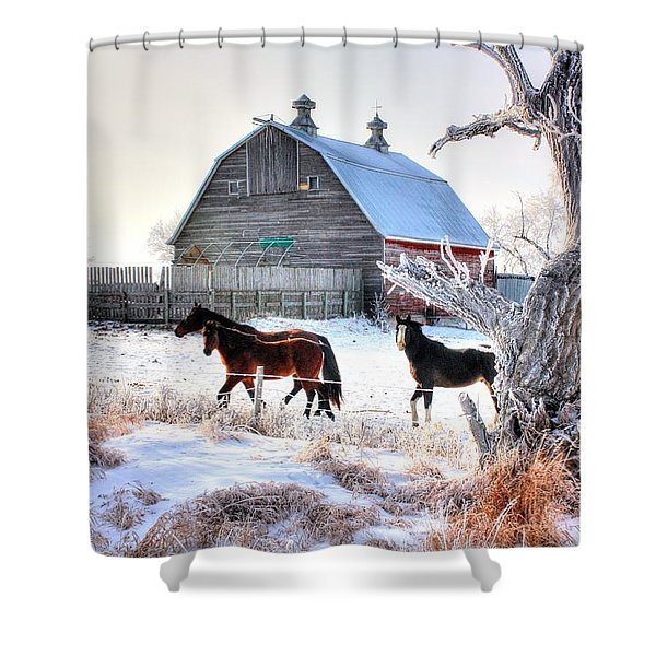 Horses And Barn Shower Curtain