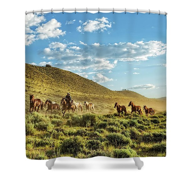Horses And More Horses Shower Curtain