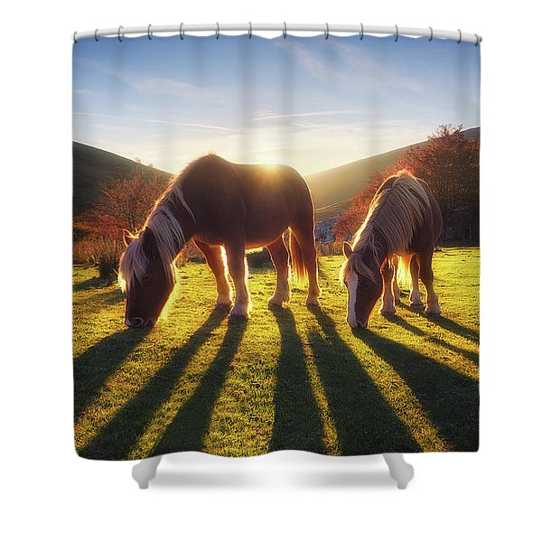 Horses In Austigarmin Shower Curtain