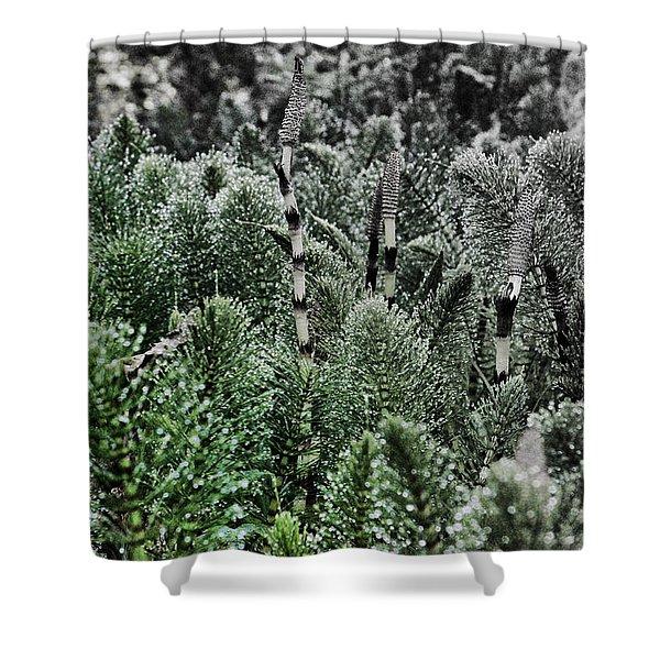 Horsetail Dewpoint Shower Curtain