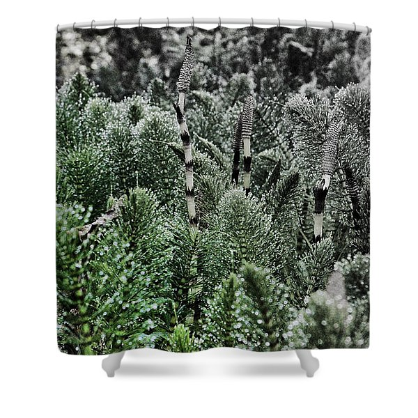 Horsetail Dewpoint Shower Curtain