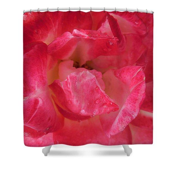 Hot Rose Shower Curtain