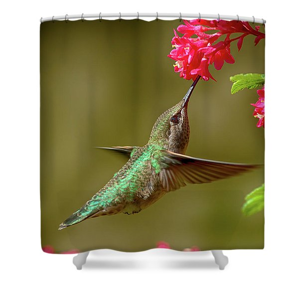 Hover Lunch Shower Curtain