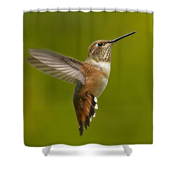 Hover Shower Curtain