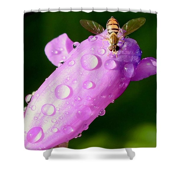 Hoverfly On Pink Flower Shower Curtain