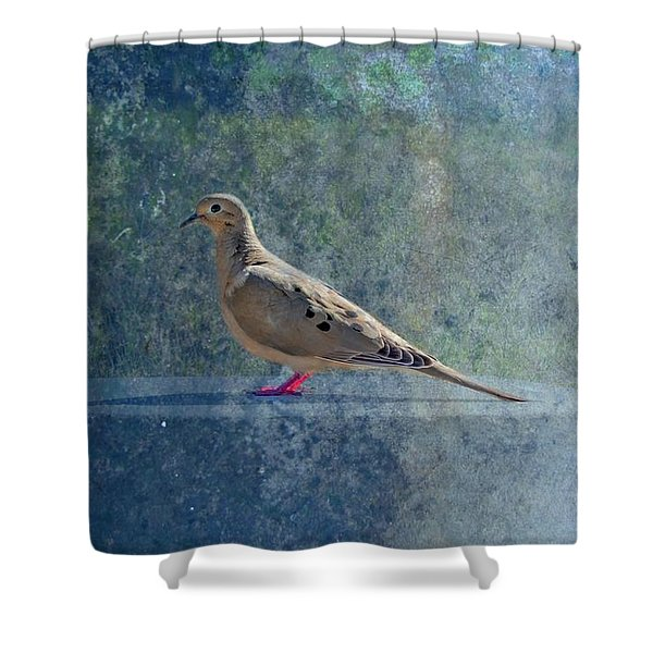 How Can You Just Leave Me Standing Shower Curtain