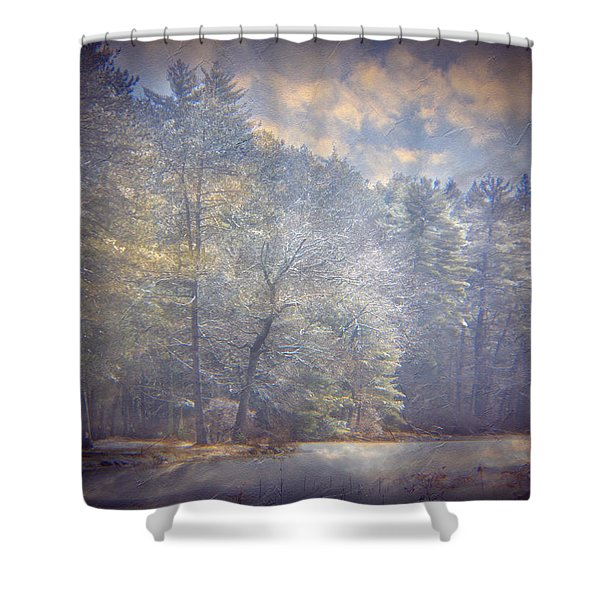 Howe State Park In Winter Shower Curtain