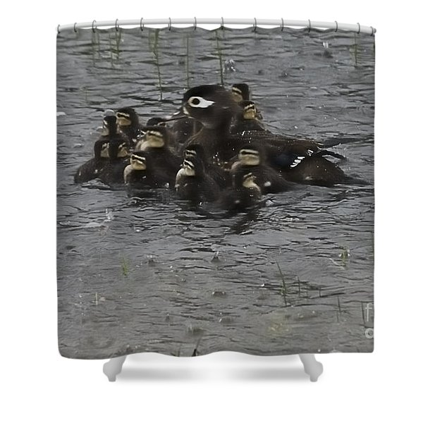 Huddle Shower Curtain