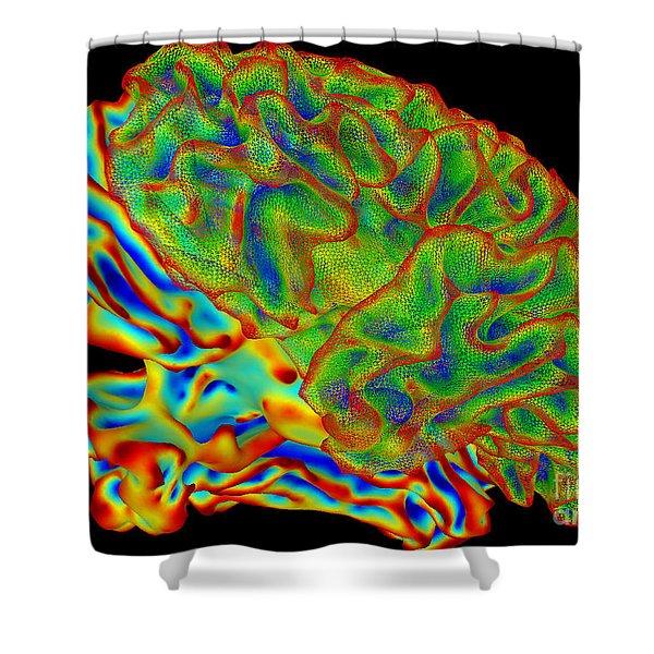 Human Brain, Surface Mapping Shower Curtain