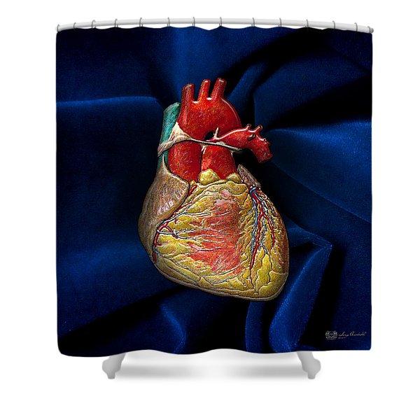 Human Heart Over Blue Velvet Shower Curtain