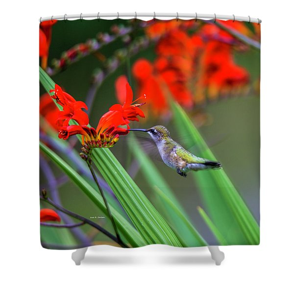 Hummer Lunch Shower Curtain