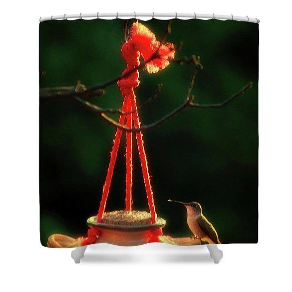 Humming Bird At Sunrise 03 Vertical Shower Curtain