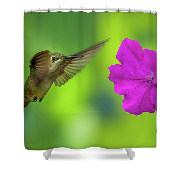 Hummingbird And Flower Shower Curtain