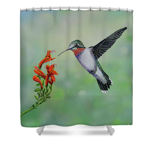 Shower Curtain featuring the painting Hummingbird Beauty by Mary Scott