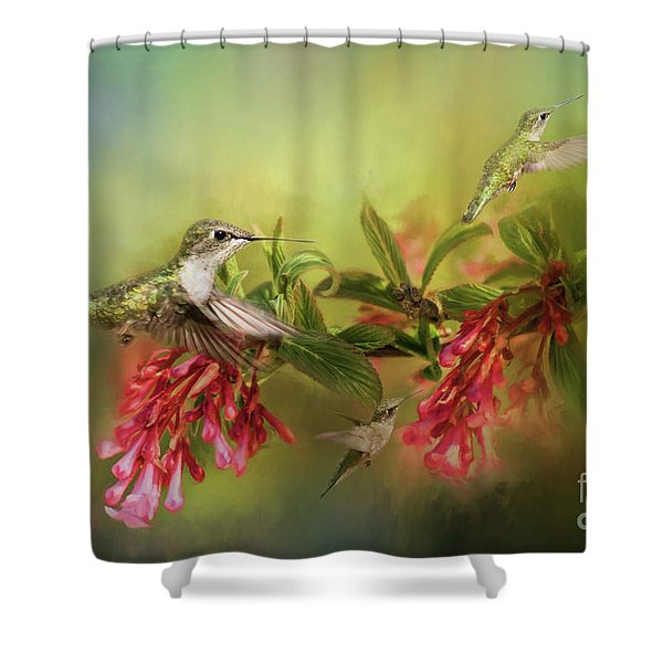 Hummingbird Paradise Shower Curtain