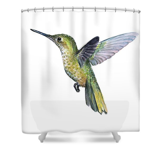 Hummingbird Watercolor Illustration Shower Curtain
