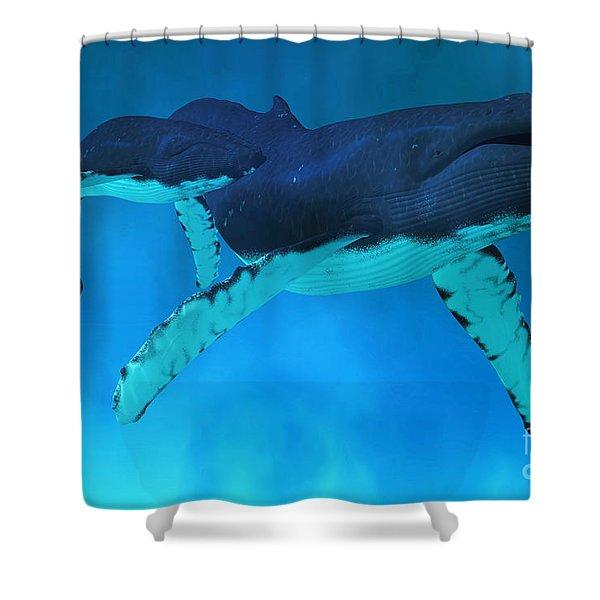 Humpback Whale Ocean Shower Curtain