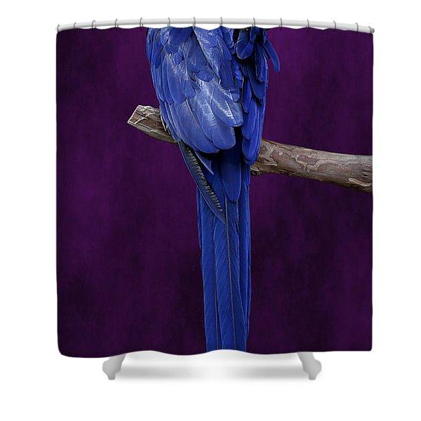 Hyacinth Macaw Panoramic Shower Curtain