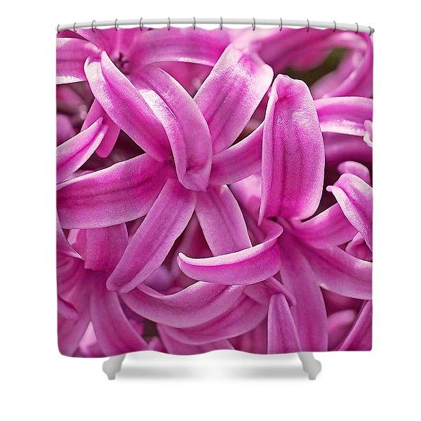 Hyacinth Pink Pearl Shower Curtain