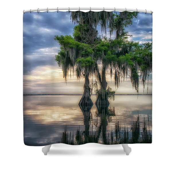 I Dreamed Of Cypress Shower Curtain