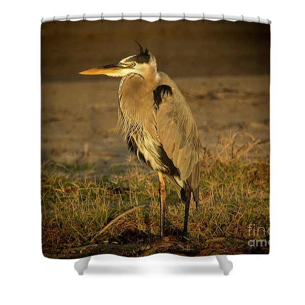 I Know They Are Coming Wildlife Art By Kaylyn Franks Shower Curtain