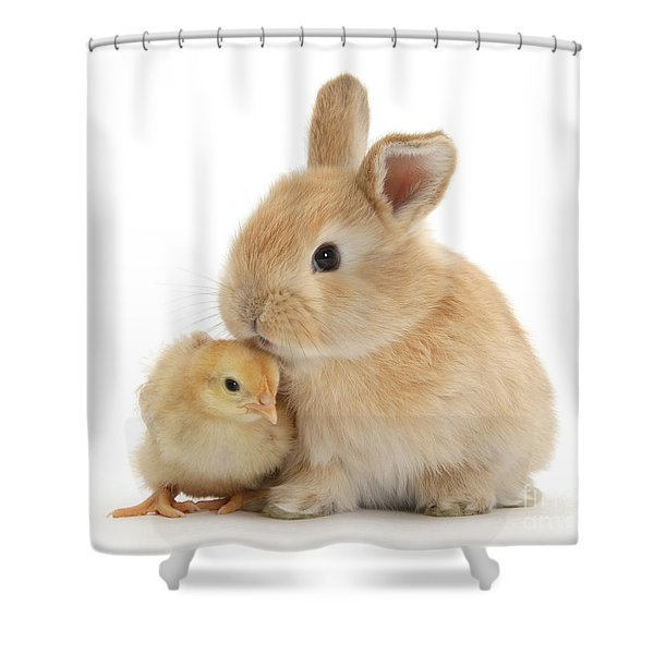 I Love To Kiss The Chicks Shower Curtain