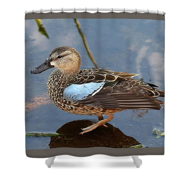 I Really Am A Green Winged Teal Shower Curtain