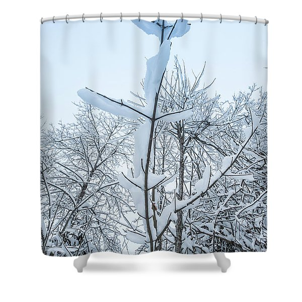 I Stand Alone- Shower Curtain