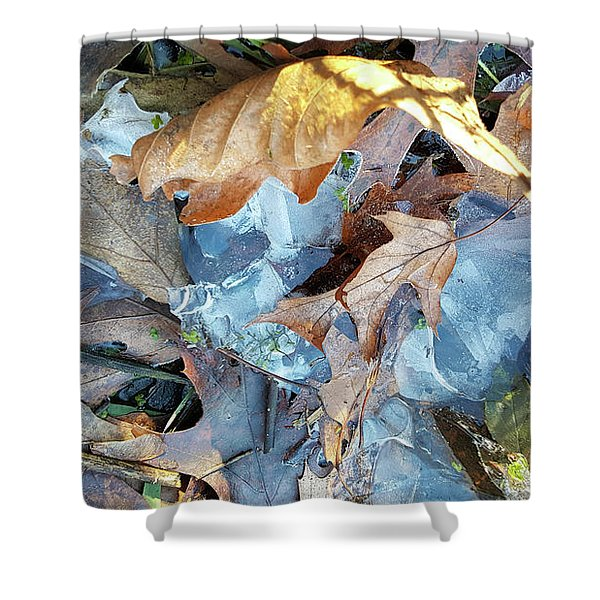 Ice And Fallen Leaves Shower Curtain
