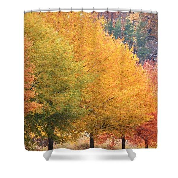 October Trees Shower Curtain