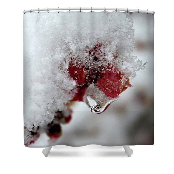 Ice Drip Shower Curtain