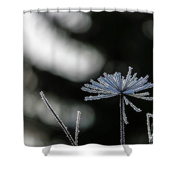 Ice Flower Shower Curtain