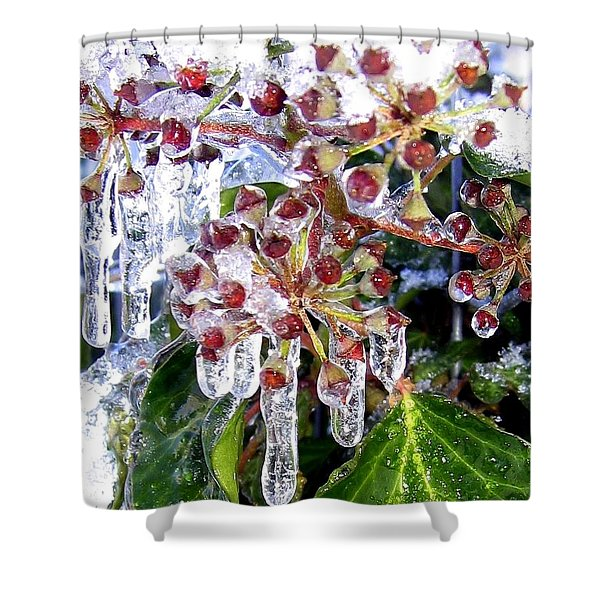 Iced Ivy Shower Curtain