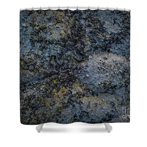 Iceland Lava Field  Shower Curtain