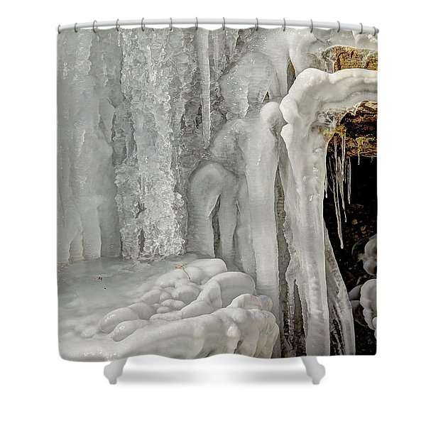 Icy Tendrils Shower Curtain
