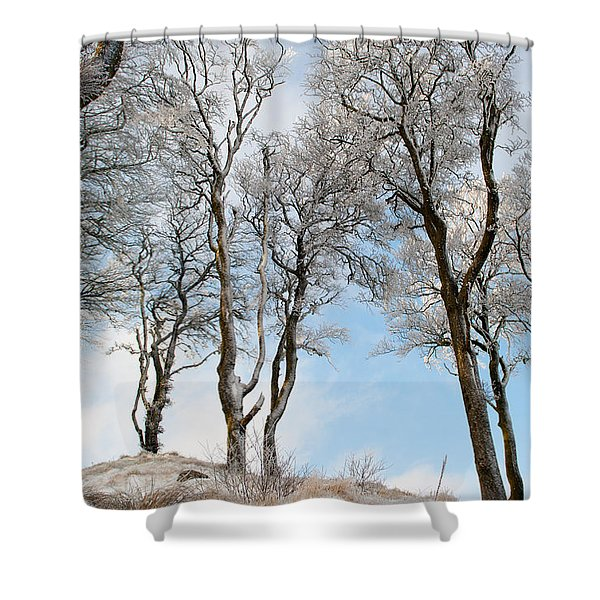 Icy Trees Shower Curtain