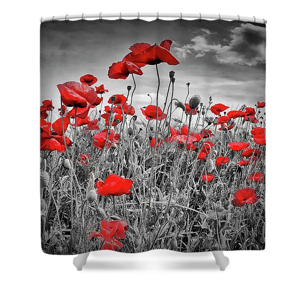 Idyllic Field Of Poppies Colorkey Shower Curtain