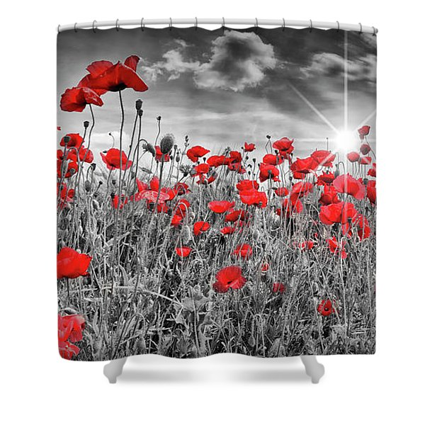 Idyllic Field Of Poppies With Sun Shower Curtain