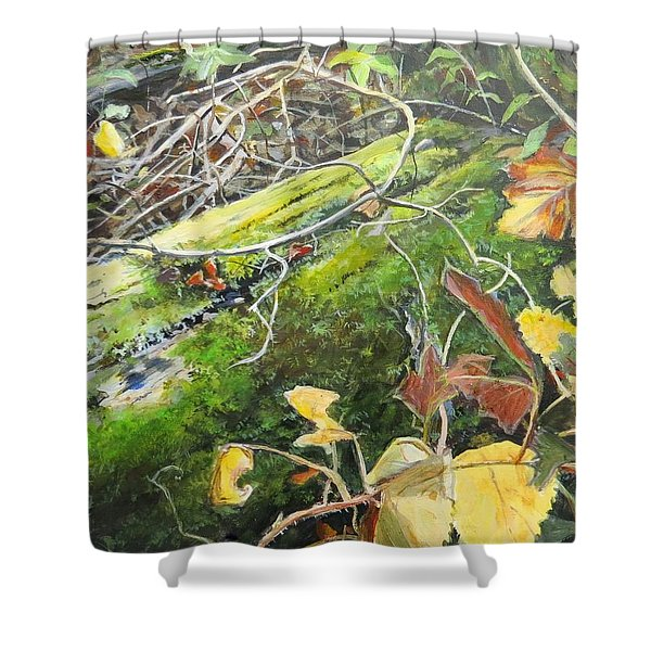 If There Were Fairies Shower Curtain