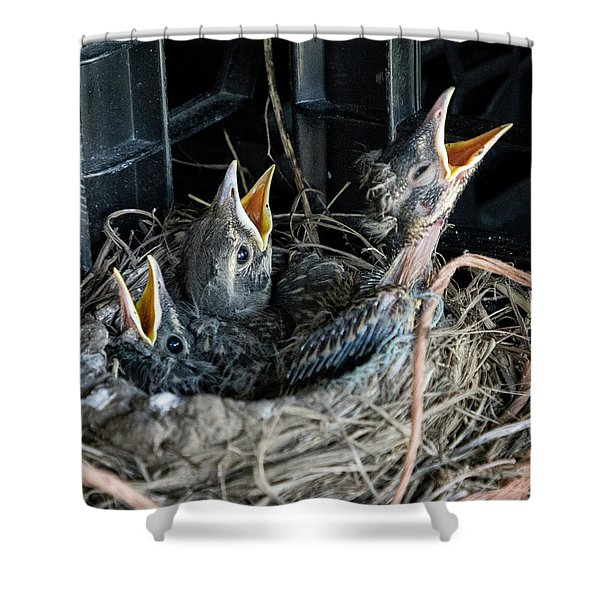 We're Hungry Shower Curtain