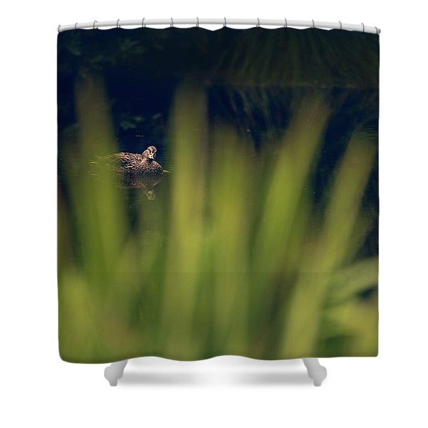 I'm Looking Through You Shower Curtain