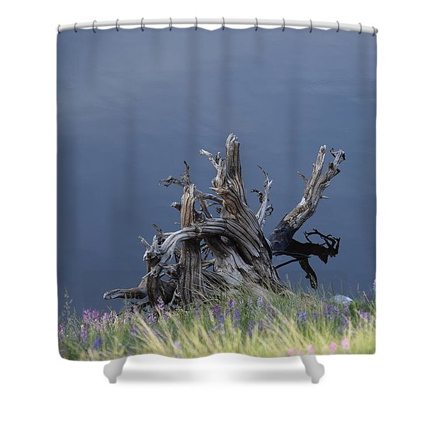 Stump Chambers Lake Hwy 14 Co Shower Curtain