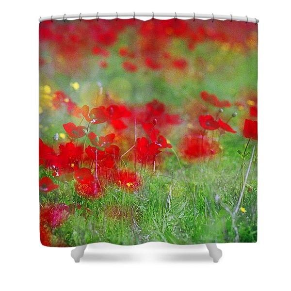 Impressionistic Blossom Near Shderot Shower Curtain