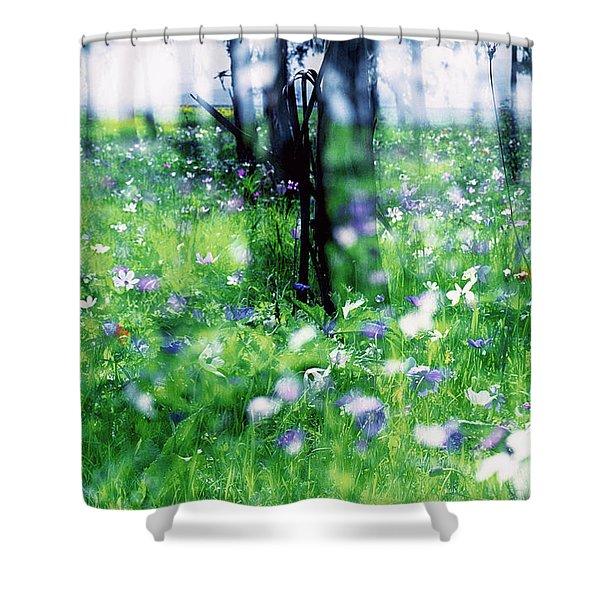 Impressionistic Photography At Meggido 1 Shower Curtain